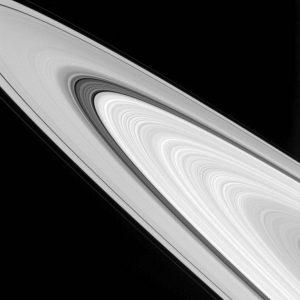 Gli anelli diSaturno/Courtesy NASA JPL