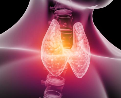 Un'immagine della tiroide.